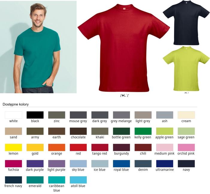 f6769fc95 Koszulka T-shirt męska STANDARD kolor